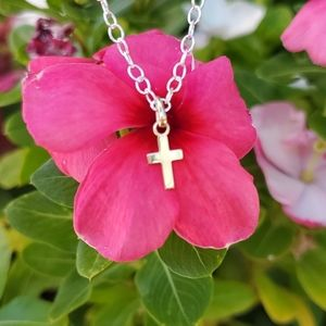 14kt Yellow Gold Mini Cross and Sterling Necklace